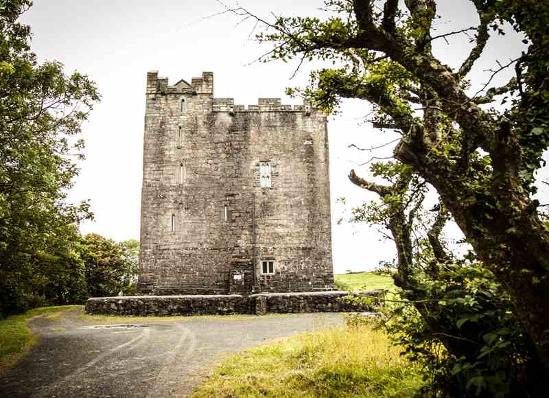 Castles To Rent For Small Groups - Ballynagowan Castle