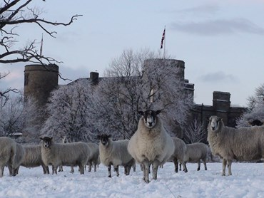 Celebrate New Year at Walworth Castle 2016